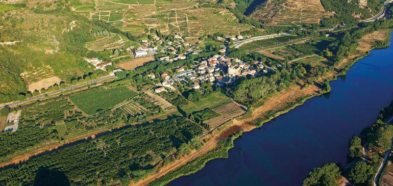 A la découverte du Rhône, une belle région viticole de France