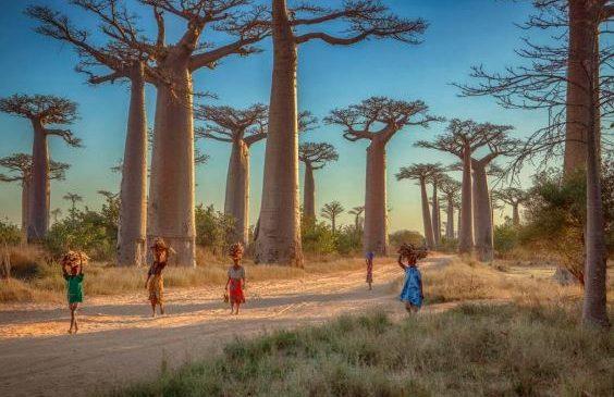 Et si on visitait Madagascar pour les prochaines vacances ?